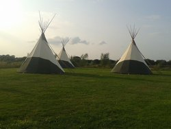 Tipi Business
