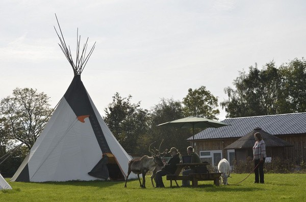 Tipi Business For Sale