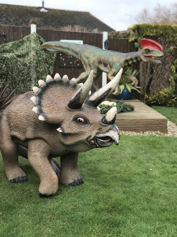 Outside Dinosaur Props
