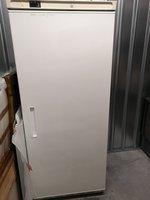 Tall / upright fridge for sale