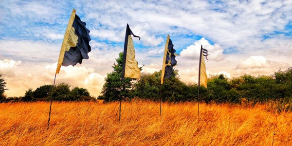 Used festival flags for sale