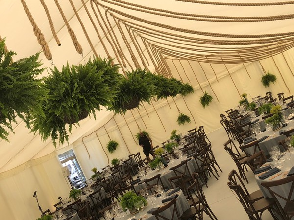 Hanging baskets in a marquee