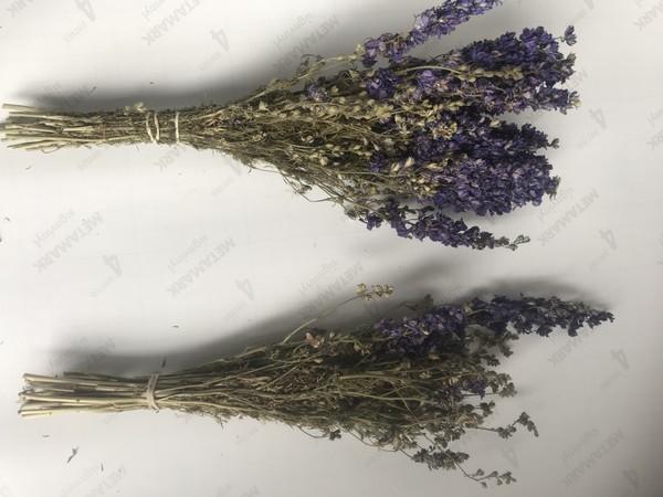 Dired lavender
