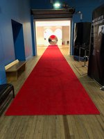 2 x Lay Flat Plush Red Carpets with Non Slip Backing