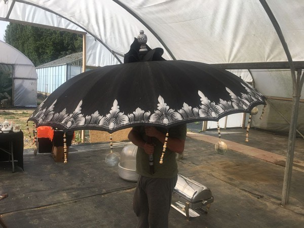 Indian umbrella