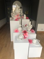 Exhibition Plinths For Sale