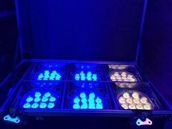 Chauvet WELL 2.0 Battery