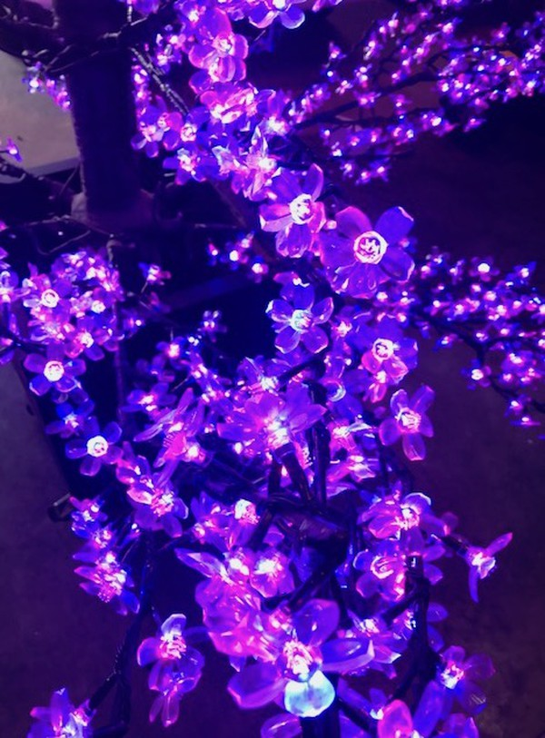Large LED Cherry Trees