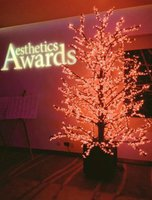 3 Metre LED Cherry Trees