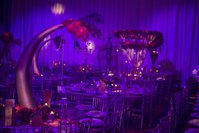 Elephant tusk table center