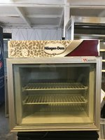 Haagen-Dazs display freezer
