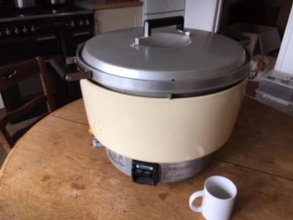 Second Hand Rinnai LPG Rice Cooker