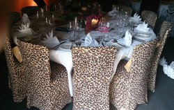 Zebra And Leopard Print Stretch Chair Covers