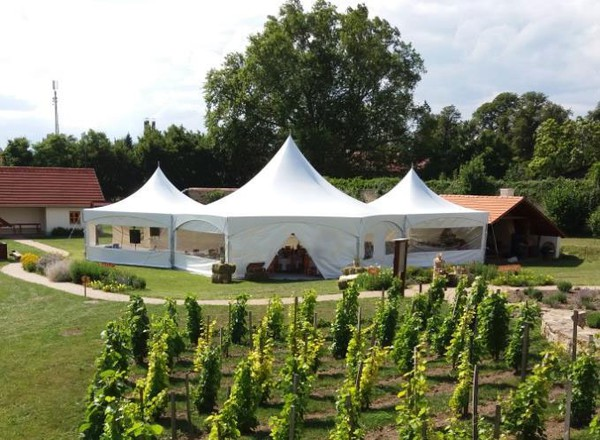 Hex and pagoda marquees joined together