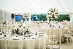 Marquee And Event Equipment Business