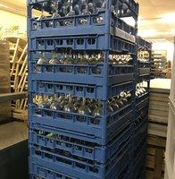 Fries Glass Racks for sale