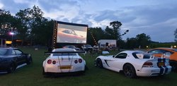 Complete Outdoor Movie Setup for sale