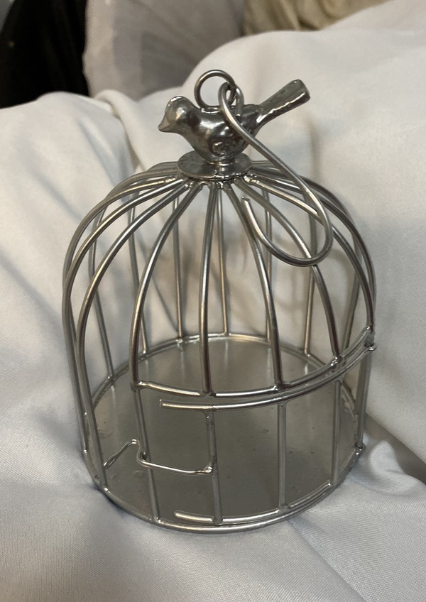 Small Silver Birdcages