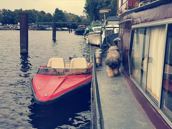 Dutch barge - house boat
