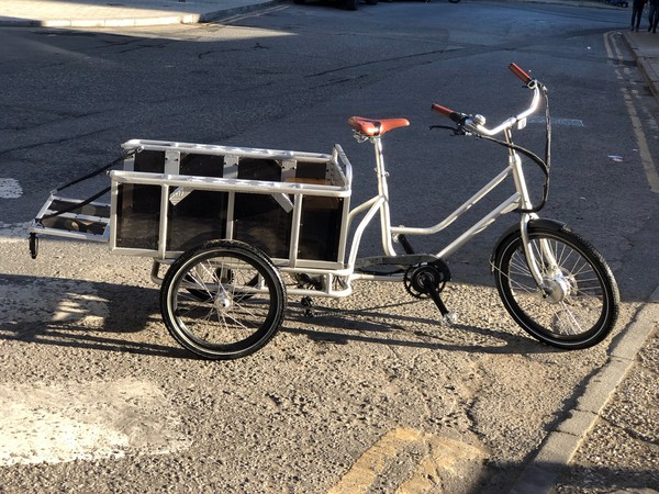 Cargo Bike / trike Electric