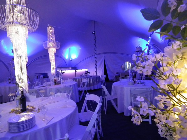 Party marquee hire business