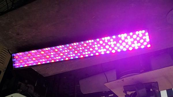 DMX / LED Light bars