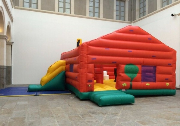 Bespoke Bouncy Play Castle