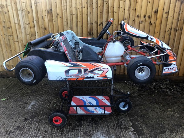 Rotax max karts for sale