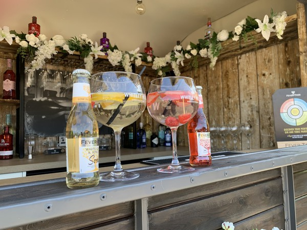 Gin Bar Horse box trailer