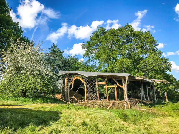 Rustic round wood glampsite shelter