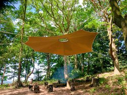 Fire Canopy for sale