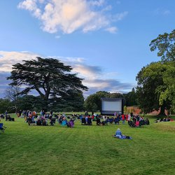 Outdoor Based Cinema Business for sale