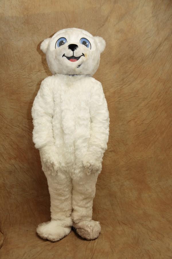 Boy / mail bear mascot / costume