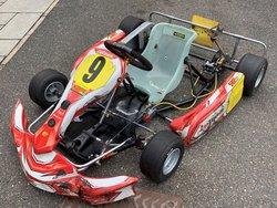 Zip Cadet Kart 2015 (with low use)