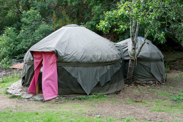Handcrafted 5 Metre Yurts