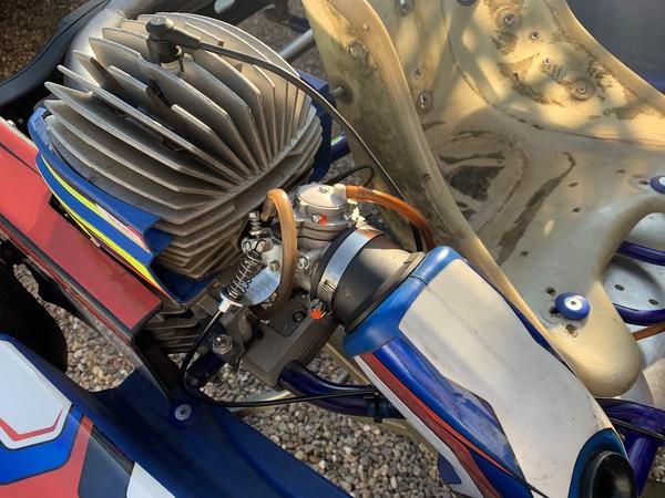 Synergy Platinum Cadet Kart