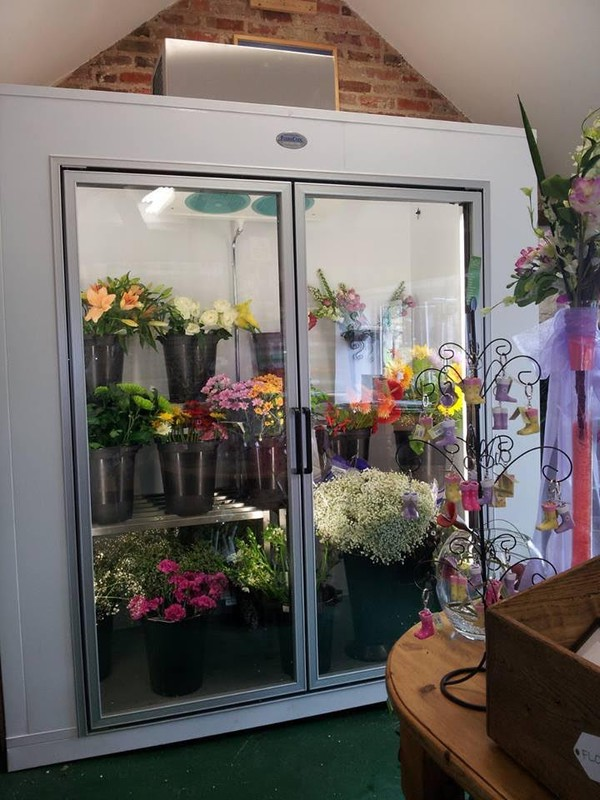 Floracool Floral Cooler Display for Flowers