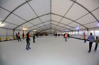 Real Ice Rink for sale