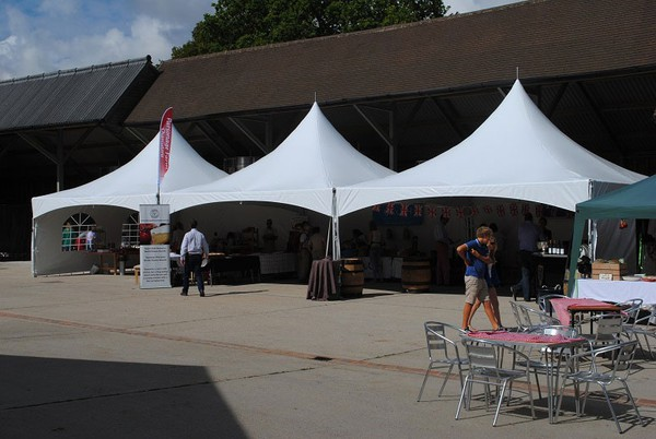 Buy Marquees Crown Canopies Marquees