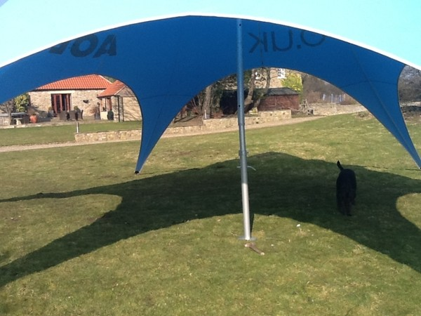 star shaped canopy tent